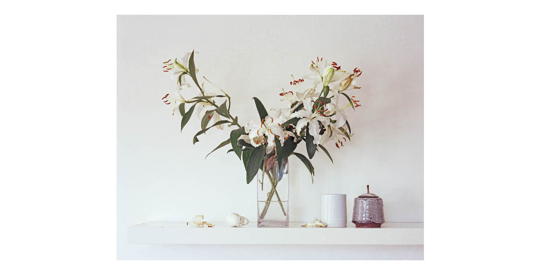 Shelf Flowers
